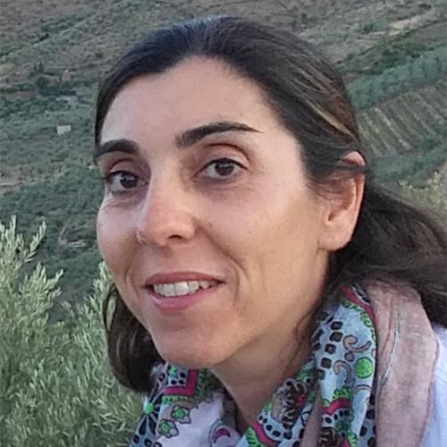 Susana Isabel Marques dos Santos Seara Pires de Andrade