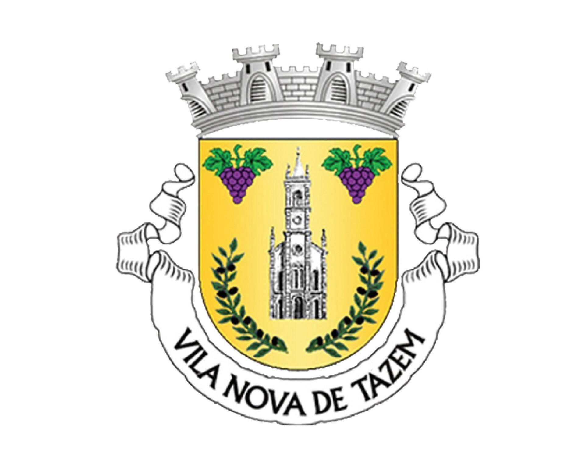 Brasão Vila Nova de Tazem